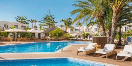 Poolområde Premium Club, för gäster i Juniorsvit Premium.