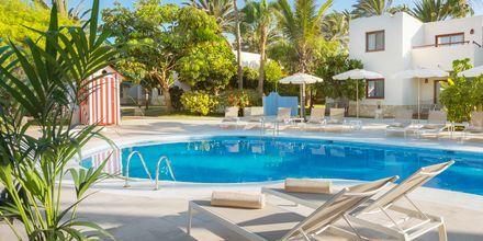 Poolområdet Tropic på Alua Suites Fuerteventura.