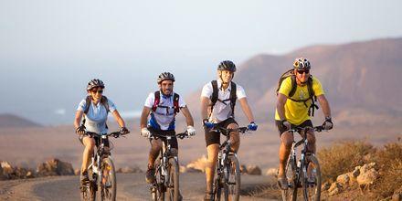Hyr cykel och utforska Fuerteventura.