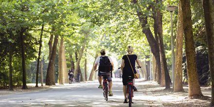Amsterdams största park, Vondelpark, är en härlig, grön oas mitt i staden.