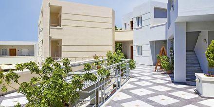 Hotell Anais Summerstar i Agii Apostoli, Kreta, Grekland.