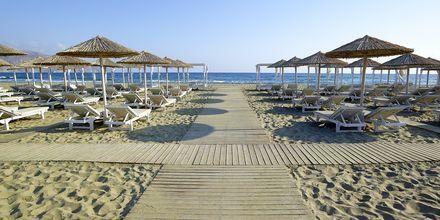 Stranden vid Anemos Luxury Grand Resort i Georgiopolis på Kreta.