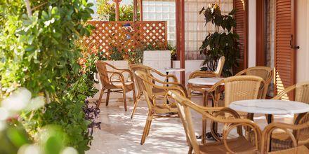 Hotell Angela i Kokkari på Samos.