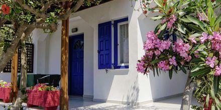 Hotell Angela Beach i Votsalakia på Samos, Grekland.
