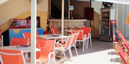Poolbar på hotell Anthimos, Platanias.