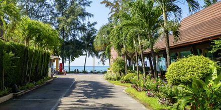 Vägen ner till stranden från Apollos hotell Aonang Princeville Villa Resort & Spa.