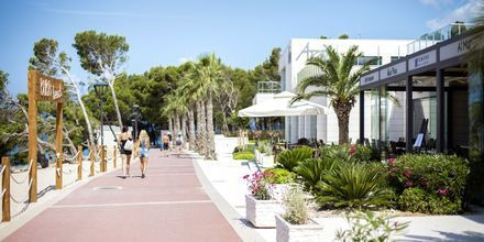 Strandpromenad vid hotell Apollo Mondo Family Romana i Makarska, Kroatien.