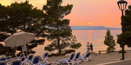 Solnedgång utanför hotell Apollo Mondo Family Romana i Makarska, Kroatien.