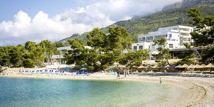 Strand vid hotell Apollo Mondo Family Romana i Makarska, Kroatien.