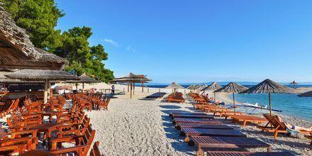 Stranden vid Buba Beach Bar.