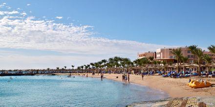 Stranden vid hotell Beach Albatros Resort i Hurghada, Egypten.