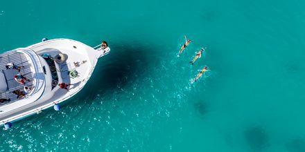 Röda Havet är perfekt för simträning.