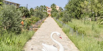 Hotell Aquamar på Kreta, Grekland.