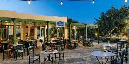 Café på hotell Aquila Rithymna Beach på Kreta, Grekland.