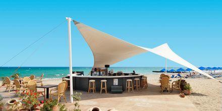 Strandbar på hotell Aquila Rithymna Beach på Kreta, Grekland.