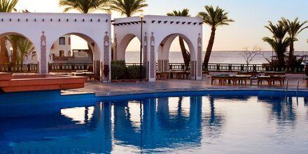 Pool på hotell Arabella Azur Resort i Hurghada, Egypten.