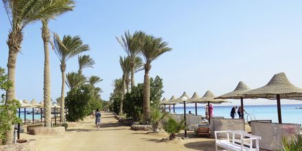 Piren på hotell Arabia Azur Resort i Hurghada, Egypten.