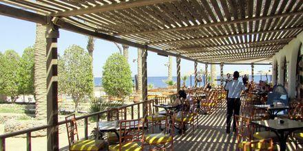 Restaurang på Arabia Azur Resort i Hurghada, Egypten.