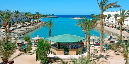 Hotellstrand på Arabia Azur Resort i Hurghada, Egypten.