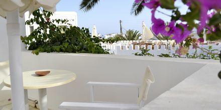Uteplats på ett av dubbelrummen på hotell Artemis på Antiparos i Grekland.