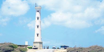 Bäst utsikt över Aruba får du från California Lighthouse, högst upp i norr.
