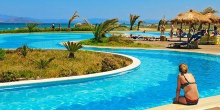 Poolområdet vid hotell Astir Odysseus på Kos, Grekland.