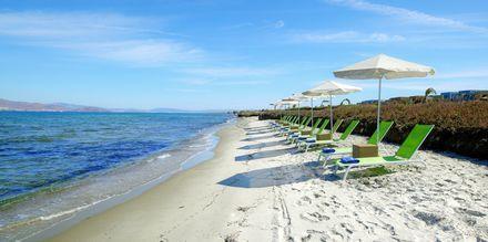 Stranden vid hotell Astir Odysseus på Kos.