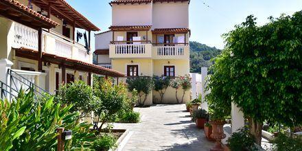 Hotell Athena i Kokkari, Samos.