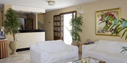 Reception på hotell Athena i Kokkari, Samos.