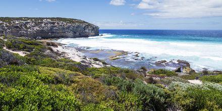 Kangaroo Island, Australien