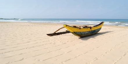 Stranden vid hotell Avani Bentota Resort & Spa i Bentota, Sri Lanka.