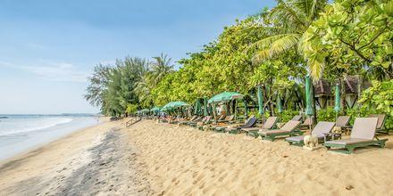 Stranden vid hotellet.
