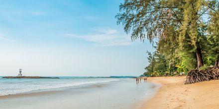 Baan Khaolak Beach Resort – vinter 2019/2020