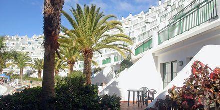 Hotell Babalu i Puerto Rico, Gran Canaria.