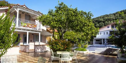 Trädgården på hotell Bacoli i Parga, Grekland.