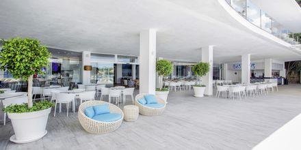 Bar på hotell Bahia Principe Sunlight Coral Playa på Mallorca, Spanien.