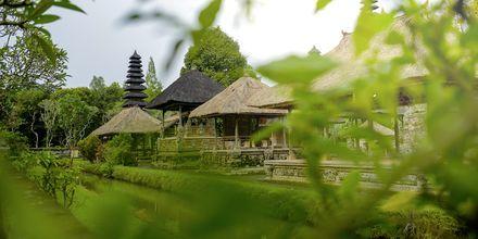 Templet Pura Taman på Bali, Indonesien.