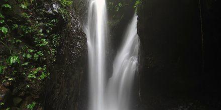 Vattenfall på Bali.