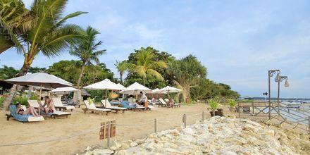 Strand vid hotell Bali Reef Resort i Tanjung Benoa, Bali.