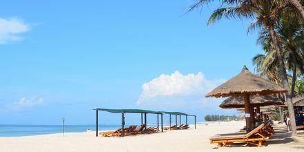Stranden vid hotell Bamboo Village Resort i Phan Thiet, Vietnam.