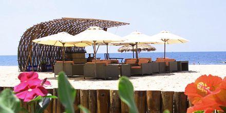Beachbaren på hotell Bamboo Village Resort i Phan Thiet, Vietnam.