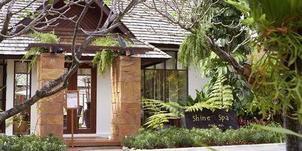 Spa på Bandara Resort and Spa, Koh Samui, Thailand.