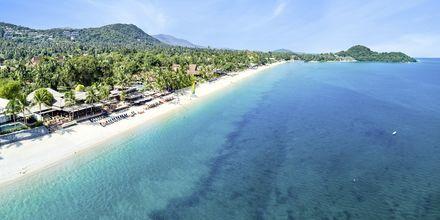 Privat strand på Bandara Resort and Spa, Koh Samui, Thailand.