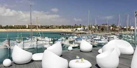 Lounge på hotell Barcelo Castillo Beach Resort på Fuerteventura.