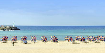 Stranden vid hotell Barcelo Castillo Beach Resort på Fuerteventura.