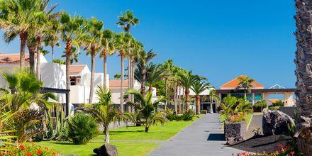 Hotell Barcelo Castillo Beach Resort på Fuerteventura.
