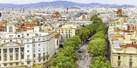 La Rambla i Barcelona, Spanien.