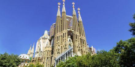 La Sagrada Familia i Barcelona, Spanien.