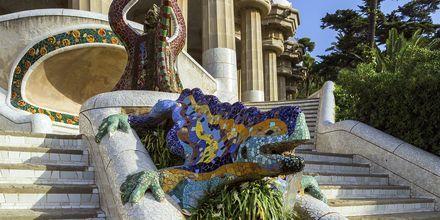 Den berömda mosaiködlan i Parc Güell.