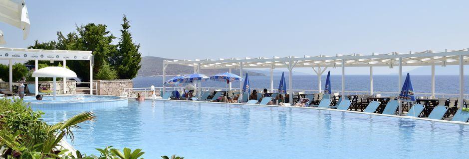 Poolen på hotell Barracuda i Saranda, Albanien.
